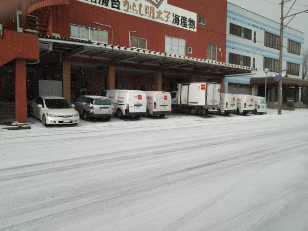 1月8日~10日 大雪でした。